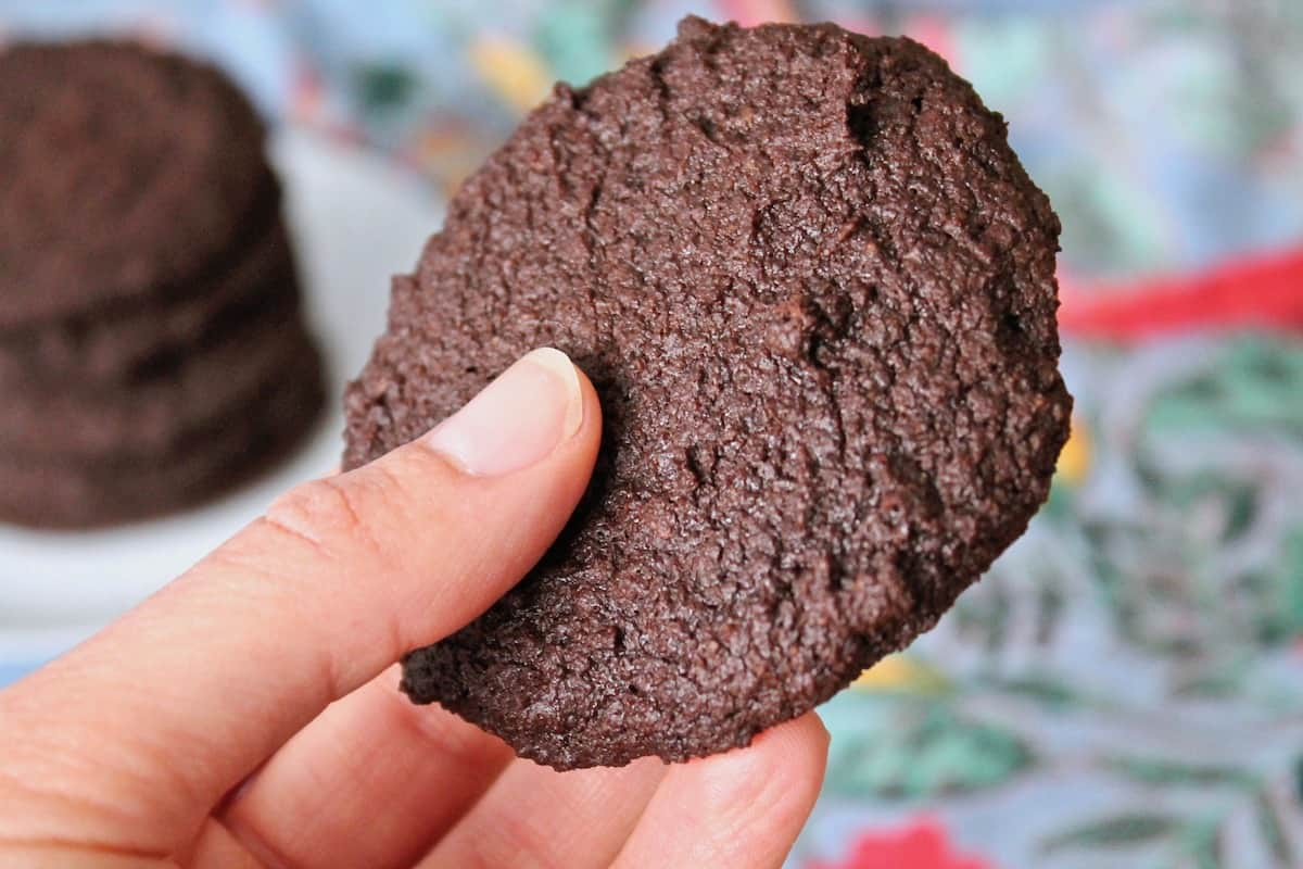 Close up shot of a hand holding one whole chocolate cookie with a blue and red table cloth in the background