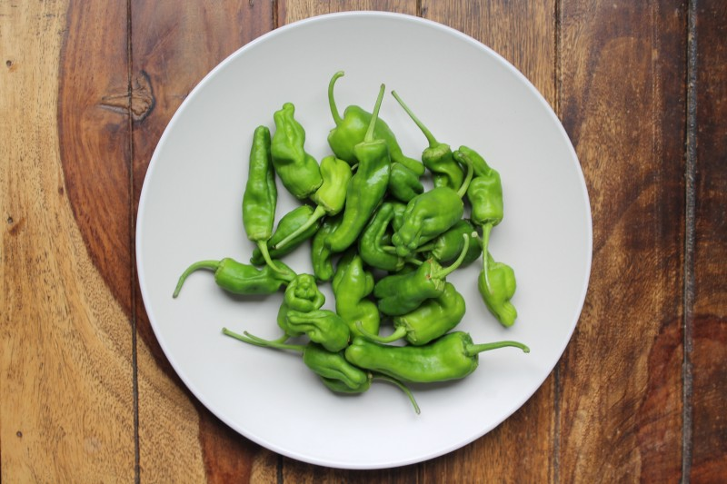An overhead shot of raw green Pimientos de Padrón on a white round plate