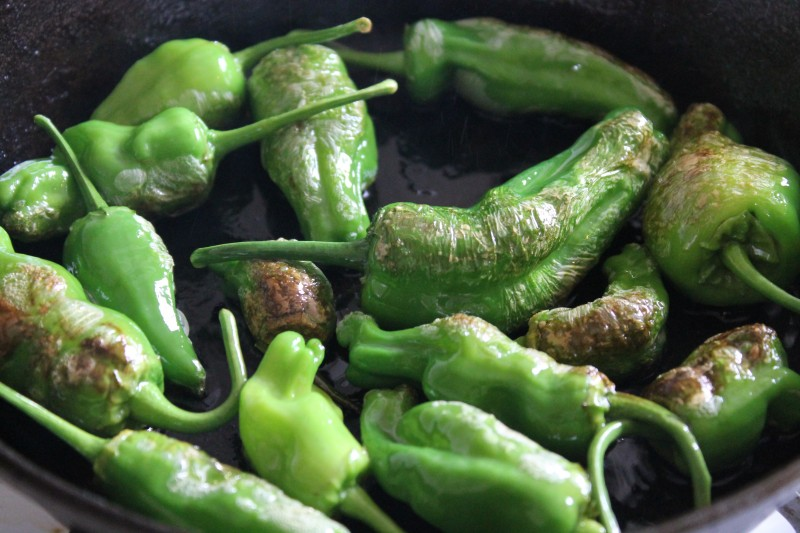 A close up of Pimientos de Padrón slightly charred in a pan