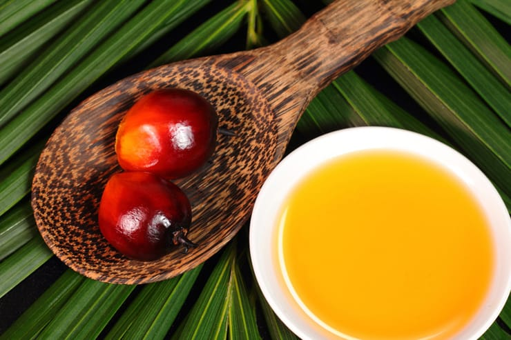 A photo of Oil palm fruit and cooking oil in a small white bowl