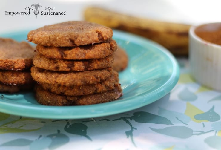 A close up of a stack of banana cookies on a blue plate
