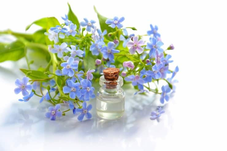 Small glass bottle of essential oil next to purple flowers