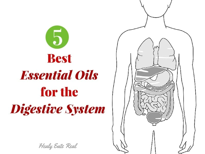 5 Best Essential Oils for the Digestive System
