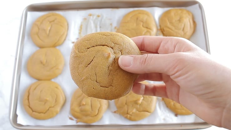 A hand holding a brown orange cookie with the baking sheet full of baked cookies in the background