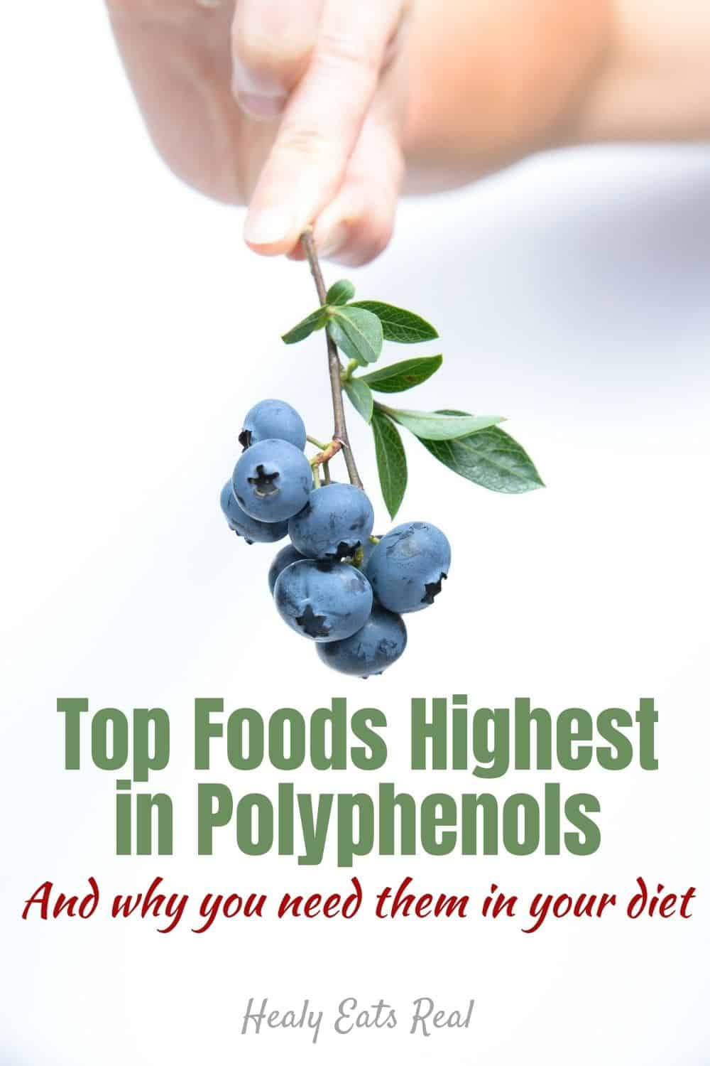 Top Foods Highest in Polyphenols (And why you need them in your diet)